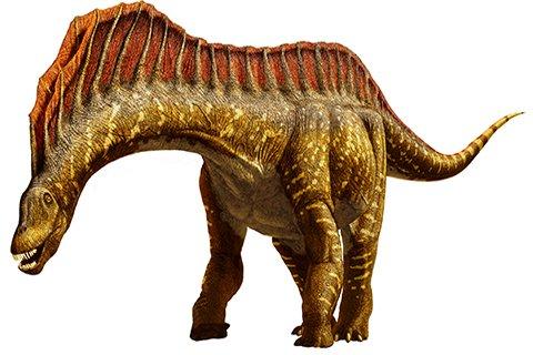 Amargasaurus (ah-MAR-guh-SAWR-uss)