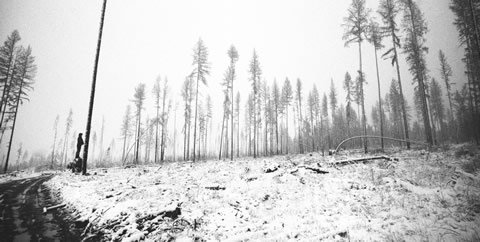 Photo by Marlin Olynyk