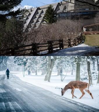 Top photo courtesy of UTSC, bottom photo by Amarpreet Kaur