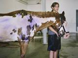 horse160