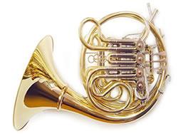 horn_250