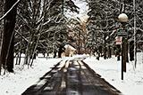winter_160
