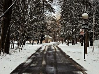 winter_full