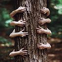 treehugger_90