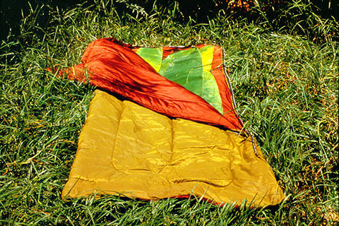 Photo of a partially open sleeping bag on grass with giant leaves inside
