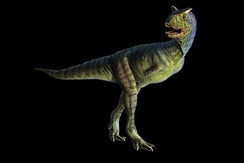 Carnotaurus (kahrn-uh-TAWR-uss)