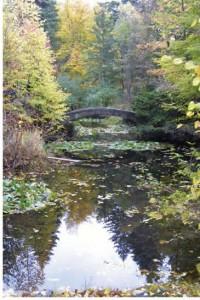 The Lislehurst Bridge