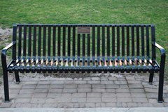 bench outside Robart's library