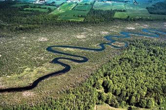 Pigeon River in Kawartha Region