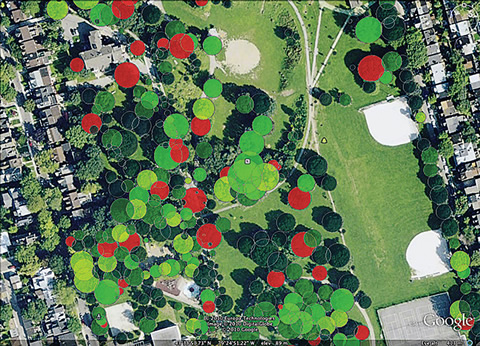 Aerial image of forested area in a city.