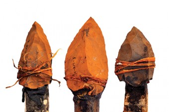 Photo of spear heads.