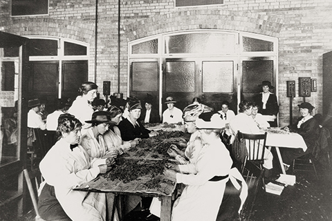 Club members makes phagnum moss dressings for soldiers, in U of T's Physics Building in 1915