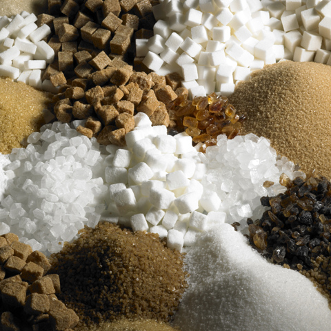 Photo of many types of sugar in piles.