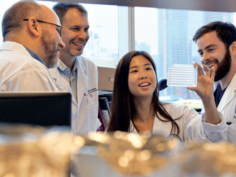 From left: U of T professors Craig Simmons and Peter Zandstra and PhD students Jennifer Ma and Curtis Woodford are among the dozens of researchers who will work to advance treatments for heart patients at the Ted Rogers Centre for Heart Research. Photo: Q Media