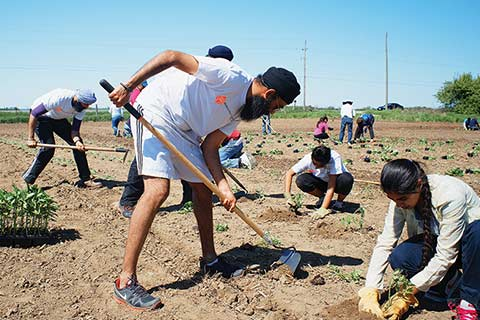 Volunteers till the fields at the Good Karma Farm in Caledon East, Ontario.