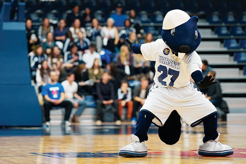 Photo of UofT mascote, True Blue at a sports game.