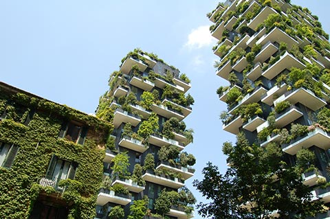 Photo of the Bosco Verticale displaying different levels of balconies with trees and plants growing
