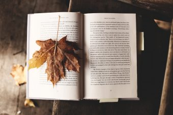 Photo of a maple leaf on a book.