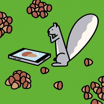 Illustration of a squirrel looking at a mobile device.