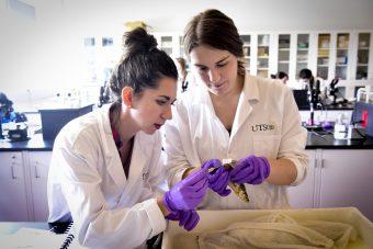 Students Identify Fish in Laboratory