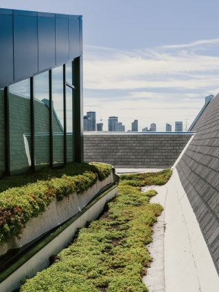 The Green Roof Innovation Testing laboratory at U of T, with the city skyline in the background