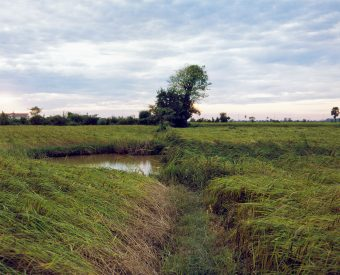 Ditch leading to a landmine crater pond