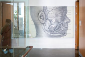 Photo of an illustration on a wall in the Terrence Donnelly Health Sciences Complex, depicting the anatomy of a human face