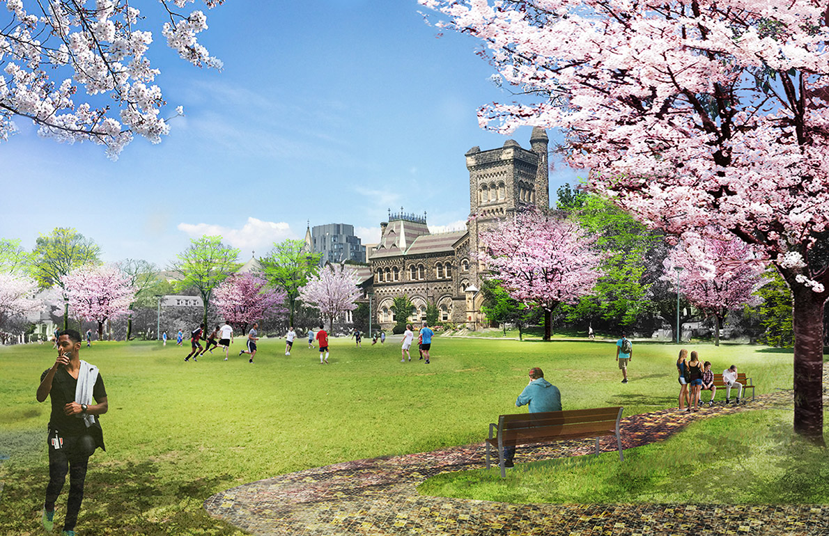 Artist rendering of King's College Circle, with University College in the background and the grassy field in front with cherry blossom trees in bloom. Students are sitting on benches, and a soccer game is underway.