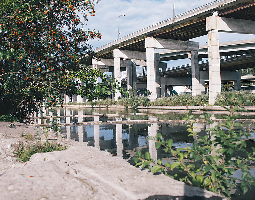 Photo of a section of raised highway with water alongside it, and a tree and shrubs