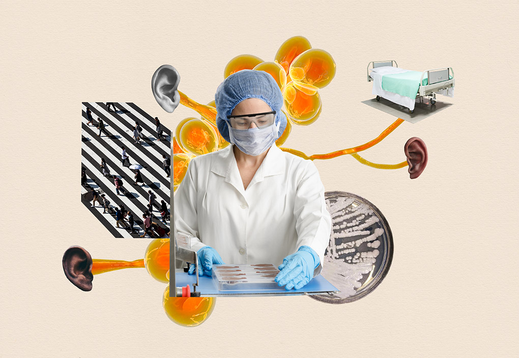 A collage showing a researcher working in the lab, a hospital bed, orange cells attached to human ears, a culture growing in a petri dish and people walking on a striped road