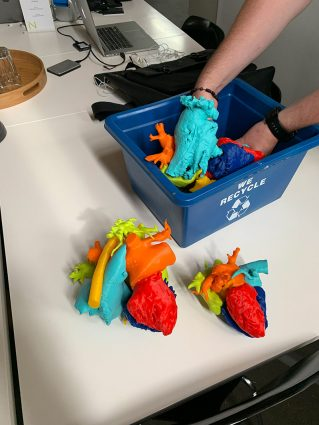 A pair of hands rifle through model pieces of a human heart in a blue recycling box sitting on a table where other pieces have been assembled into two parts