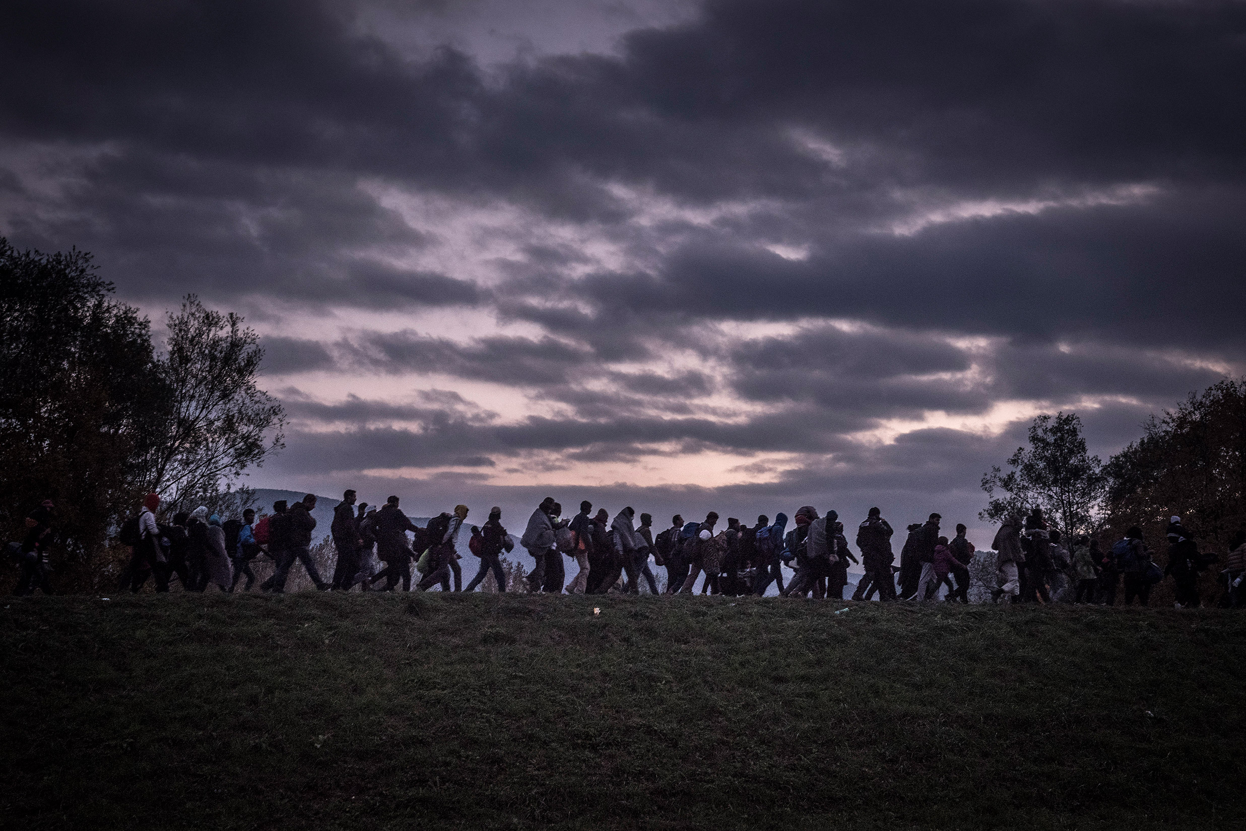 Migrants walking in line in the distance across a grassy field in the early morning or evening