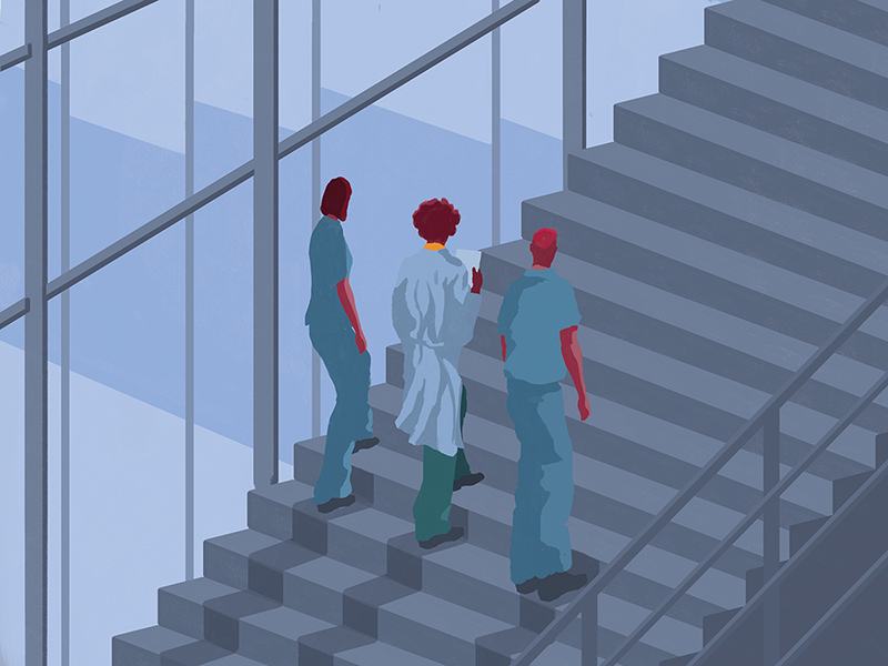 A doctor and two medical students walking up a staircase