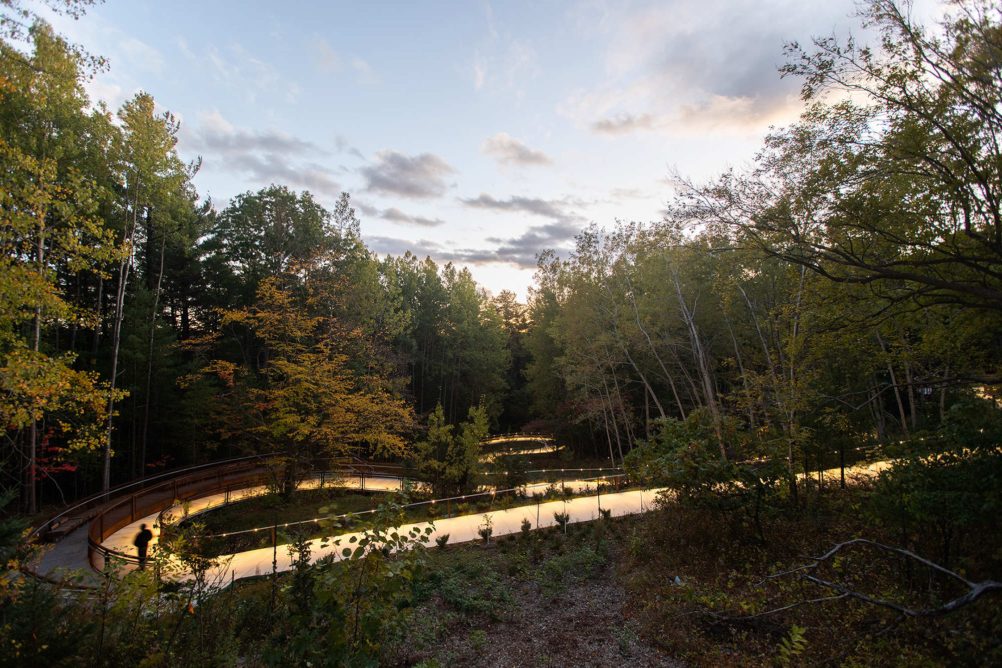 A loop of the UTSC trail through forested area