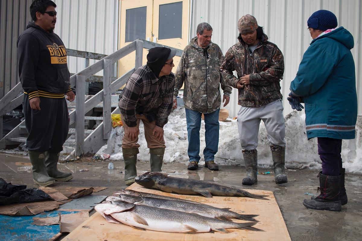 A group of men standing over trout laid out on cardboard