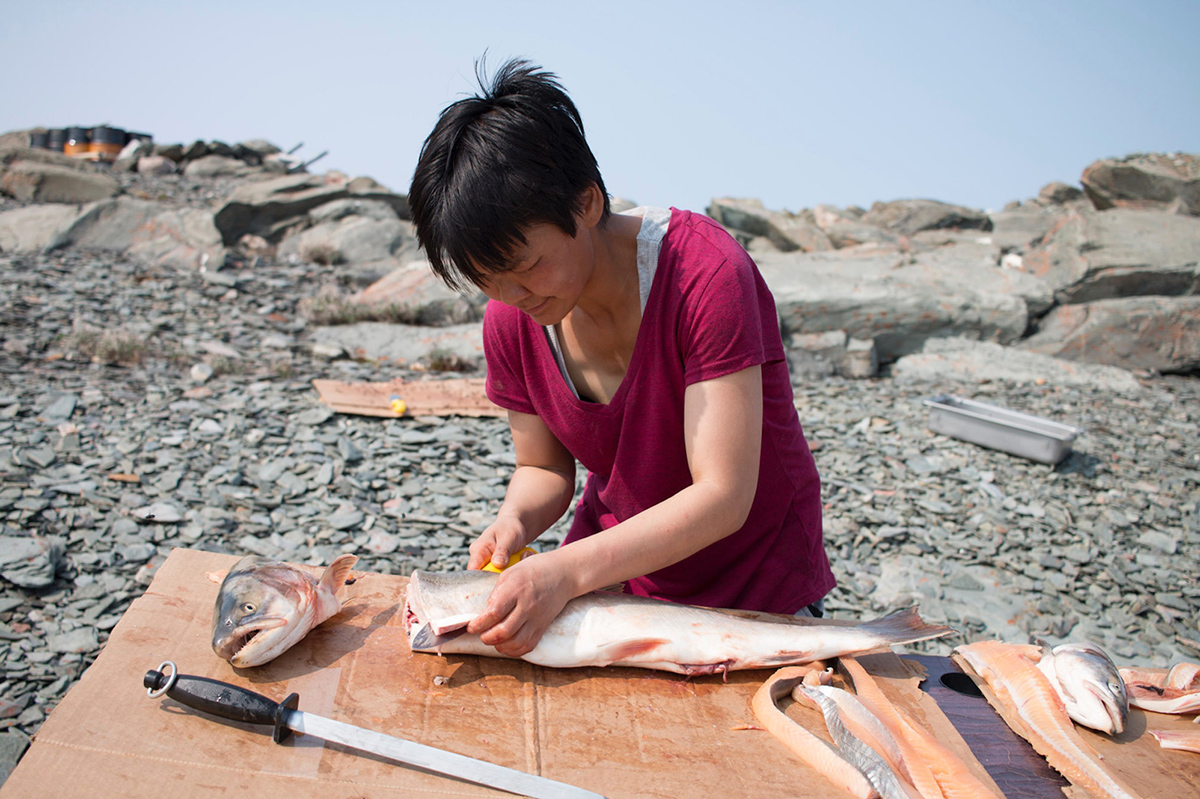 A woman in a red shirt fileting an Arctic char, with a rocky beach in the background